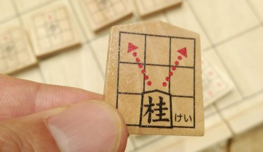 公文のスタディ将棋を幼稚園児と小学生とやってみたよ!意外な発見も
