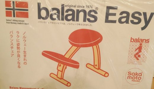 サカモトのバランスチェアって高い?小学生に買って1ヶ月のレビュー「自分から座りたい!」という効果も